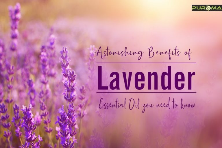 Astonishing Benefits of Lavender Essential Oil you need to know